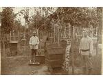 Пчеловодство в старину