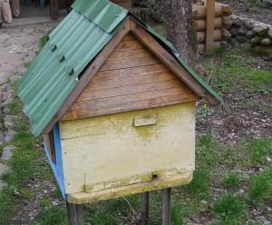 Зимовник пчел
